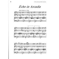 Der Junge Panflöte-Virtuose